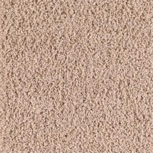 Color Harmony Champagne 504