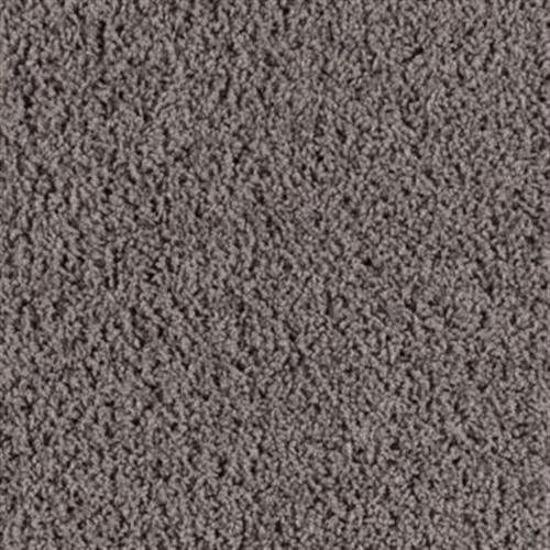 Color Harmony Peat Moss 538