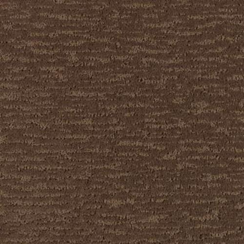 Decorative Living Walnut Shell 121