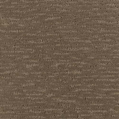 Decorative Living Cypress 122