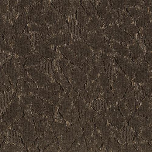 Fashion Collision Brown Leather 9848