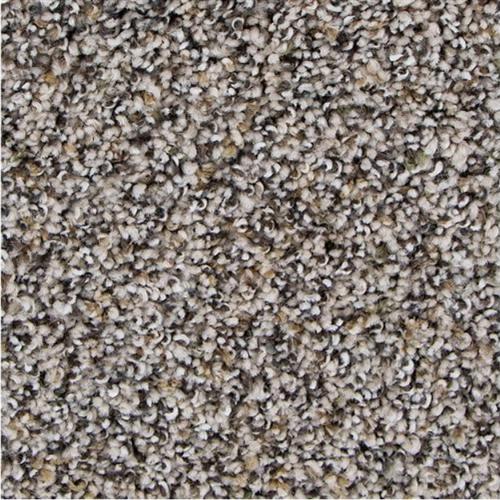 Charming Qualities in Ravine - Carpet by Mohawk Flooring