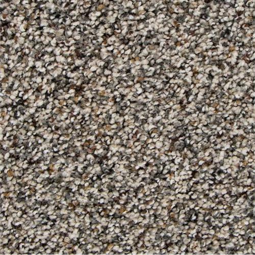 Charming Qualities in Elmwood - Carpet by Mohawk Flooring