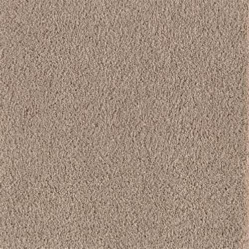 Eastern Seaboard Antelope 119