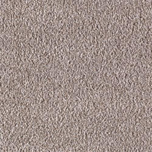 Secret Fascination Taupe Treasure 503