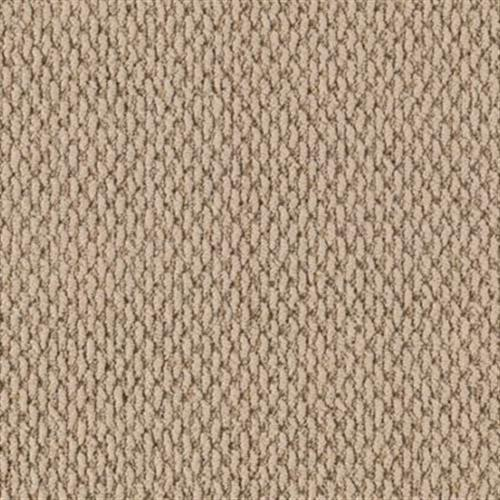 Peaceful Shores Tropical Taupe 508