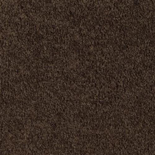 Leading Look Dark Chocolate 538