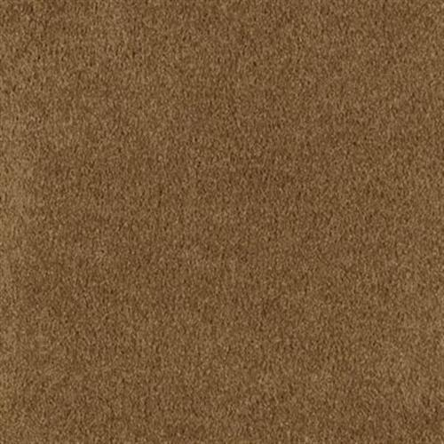 Coastal Pacific Polished Copper 517
