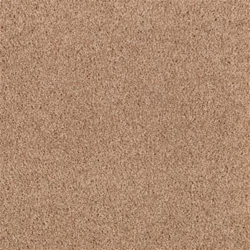 Exquisite Element Cork 508