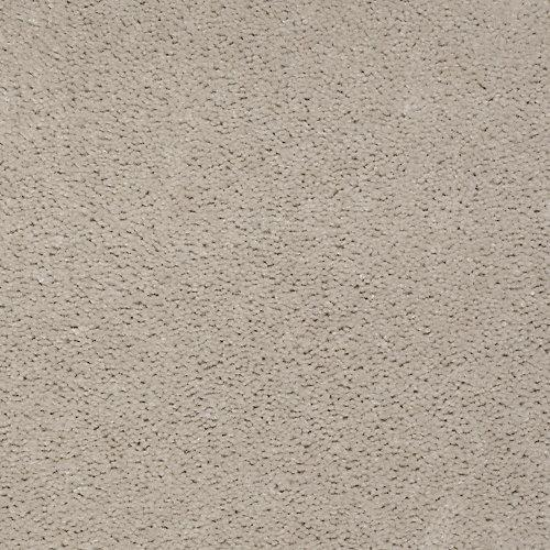 Accelerator Plus Shadow Taupe 759
