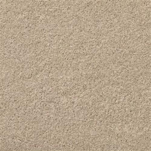 Windwalker Wet Sand 504