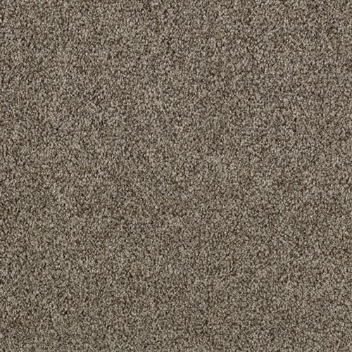 Gentle Embrace Shale Grey 9825