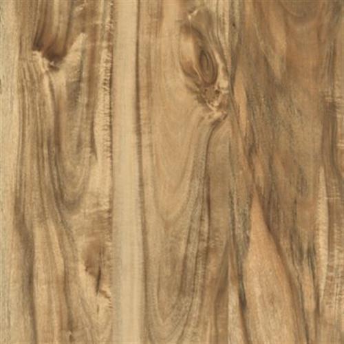 Cammeray Natural Acacia 02136