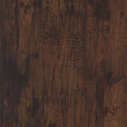 Cammeray Bark Hickory 17114