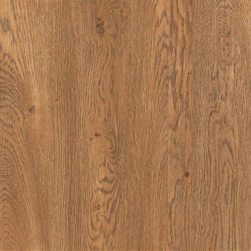 Cammeray Gunstock Oak 61D02