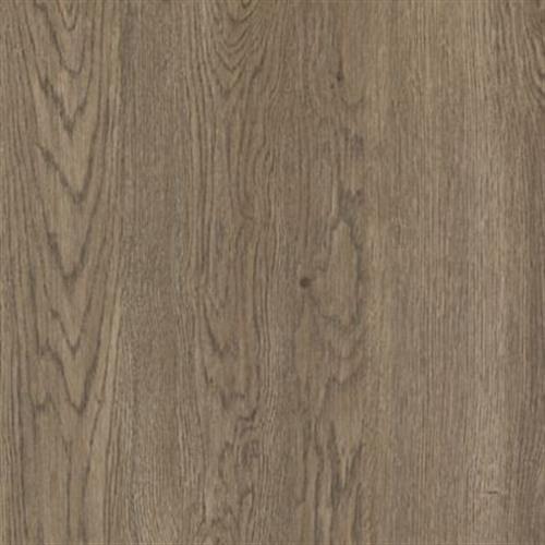 Cammeray Truffle Oak 61D05