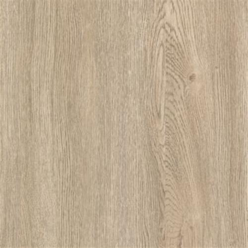 Cavado Dovetail Oak 61D07