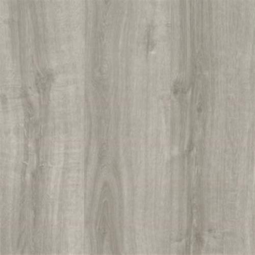 Grass Valley Clic Silver Oak