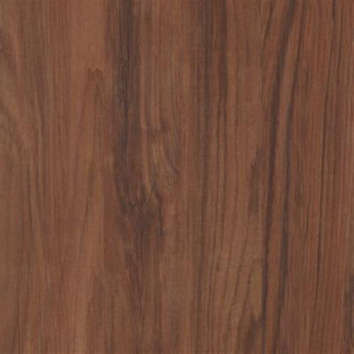 Simplesse Molasses Chestnut 54208