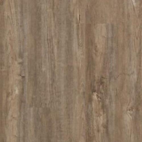 Solidtech - Alden Plank Elsmore