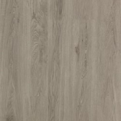 Solidtech - Galvyn Pearl Platinum 6