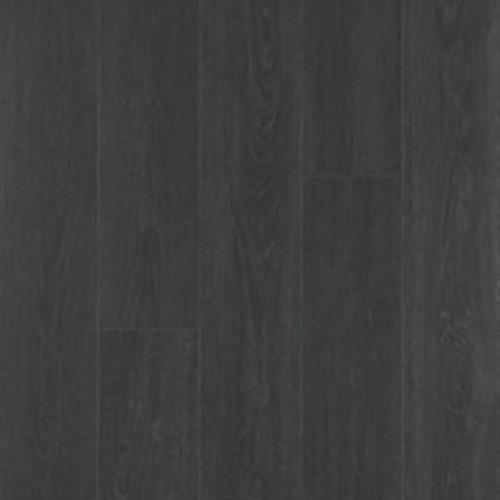 Solidtech - Revella Dark Horse 15