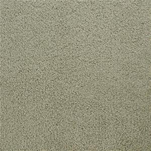 Carpet Bonterra 4138 PleasantPlace