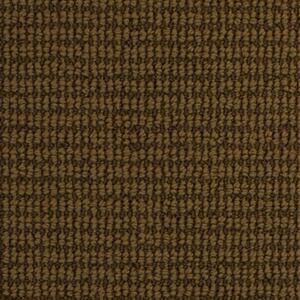 Carpet SongBird 2961 Elemental