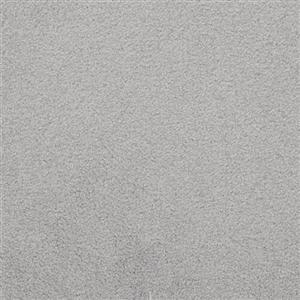 Carpet Unending 5805 Ascot