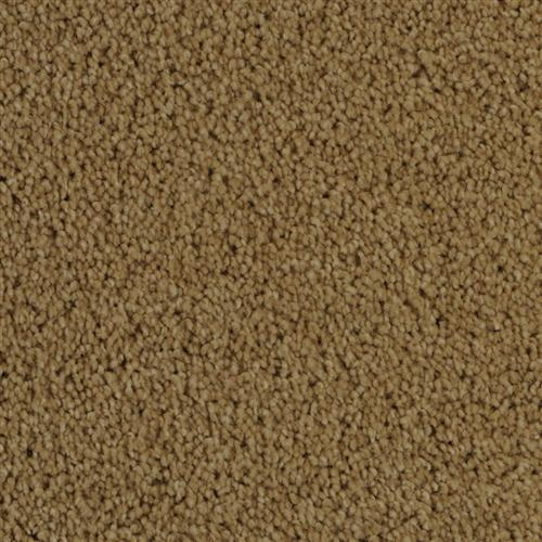 Center Stage Suede 25220
