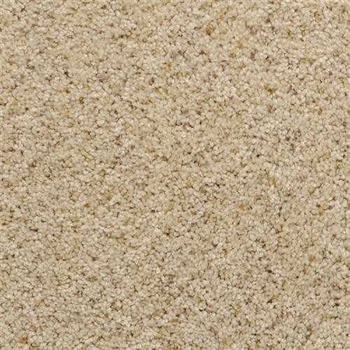 Cozy Sand Storm 25723