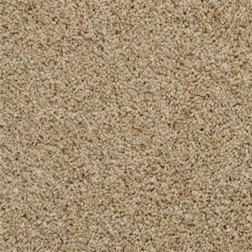 Shop for carpet in Pahrump, NV from Carpets Galore