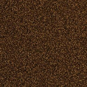 Carpet Delight 5453 Yucatan