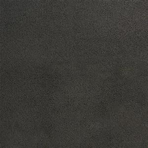 Carpet PenleyEstates 2748 OnceOver