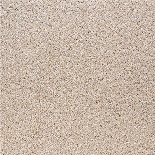 Shafer Point Bleeker Beige 25363