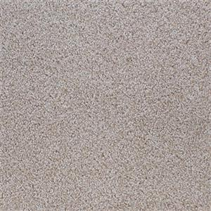 Carpet ShaferPoint 5538 DevonwoodTaupe
