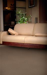 Carpet Alcova Tapioca 25160 thumbnail #2