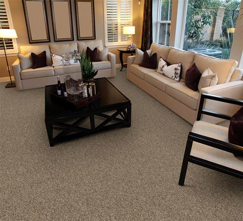 Room Scene of Heart's Content - Carpet by The Dixie Group
