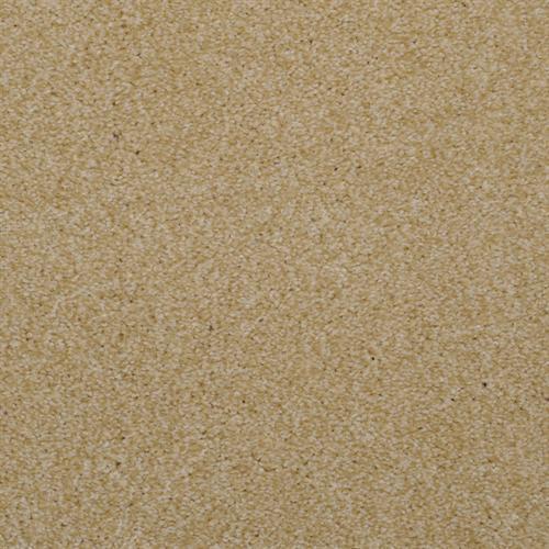 Spellbinding Sand Dune 17504