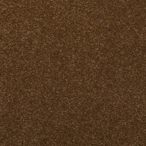 Spellbinding Spice Trader 37500
