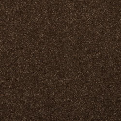 Spellbinding Marsh Brown 77506