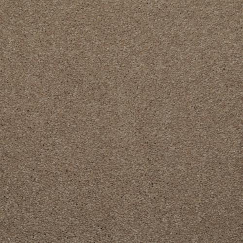 Spellbinding Khaki Tone 77513