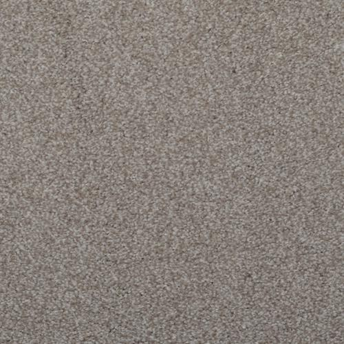 Spellbinding Rockport 87516