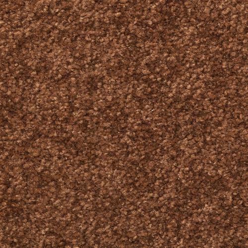 Inspiring Chocolate Chip 77304