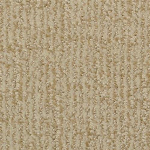 Cape Cod Sorbet 18514
