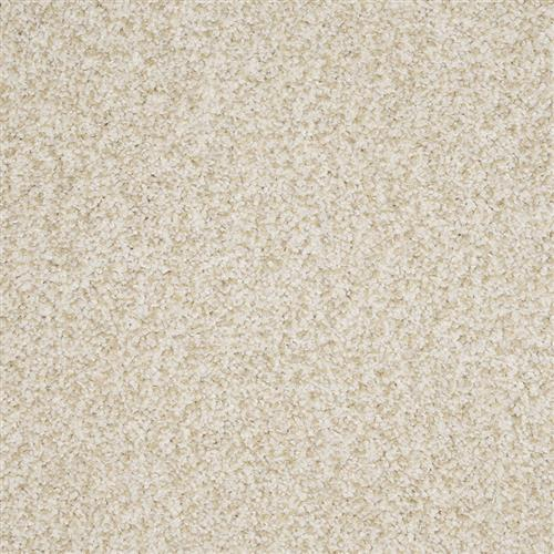New Age in Elite - Carpet by The Dixie Group