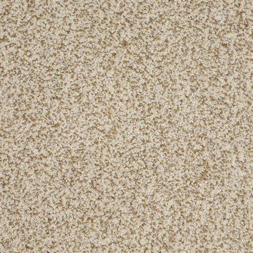 New Age in Premier - Carpet by The Dixie Group
