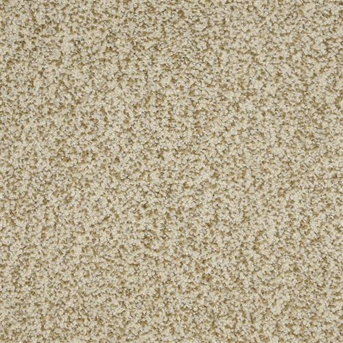 New Age in Jackpot - Carpet by The Dixie Group