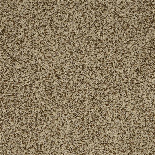 New Age in Champion - Carpet by The Dixie Group