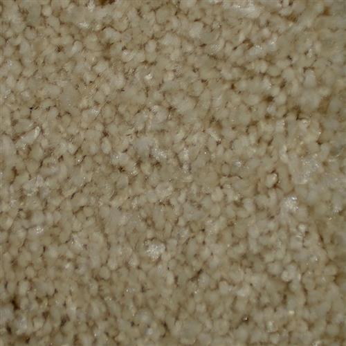 Silken Thread Piedmont 27902